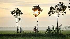Rondreizen, Fiets- en Wandelvakanties naar Azië