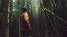Wandel- en Fietsvakantie in de Eifel met Vertrekgarantie