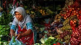 Single Groepsreis Indonesië