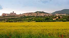 Wandelvakantie voor Singles in Toscane