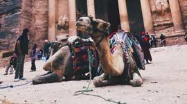 Singlereis naar Jordanië