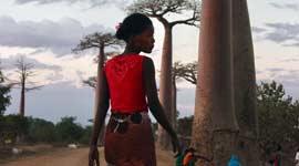 Single Rondreizen Madagascar