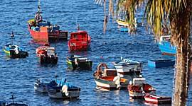 Wandel en Excursie Vakantie Madeira voor Singles