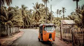 Single Groepsreizen Sri Lanka