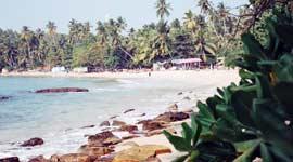Single Reis naar Sri-Lanka