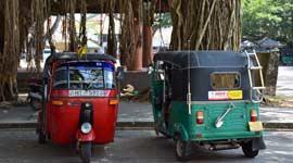 Groepsreizen Sri Lanka