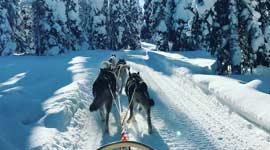 Actieve Singlereizen naar Lapland in Zweden