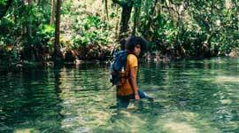 Jungle Thais
